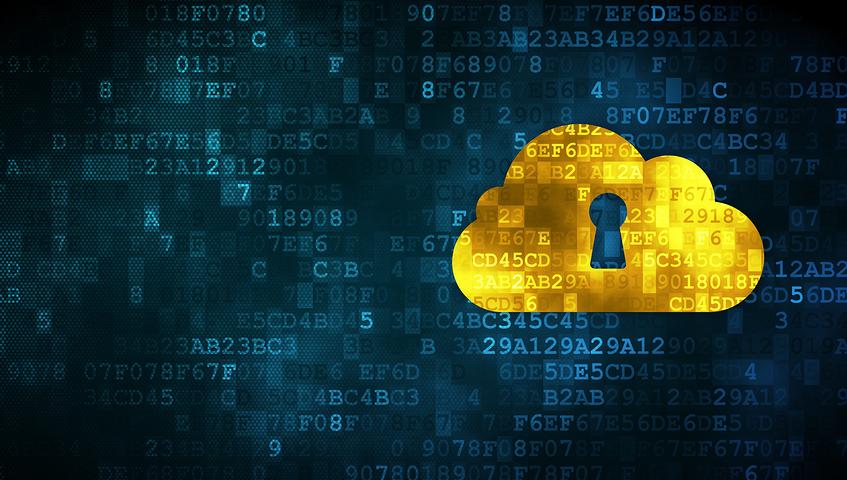 ثقافة أمن المعلومات في المنظمات غير الربحية مزن